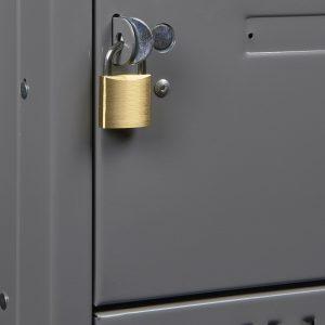 Skapīša slēdzenes